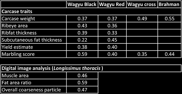 Heritabilities for carcase traits for Wagyu Black and Wagyu Red