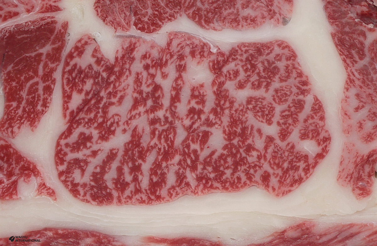 Digital image of highly marbled Wagyu beef