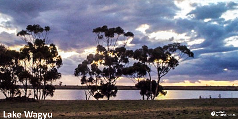 Photograph of sunset at Lake Wagyu