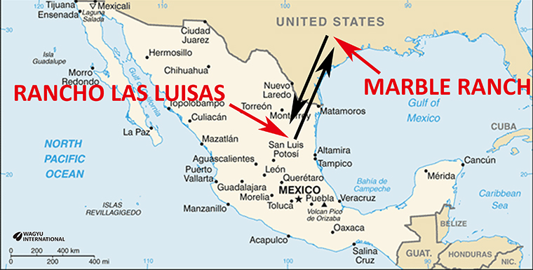 Map showing Rancho Las Luisas in Mexico and Marble Ranch in Texas