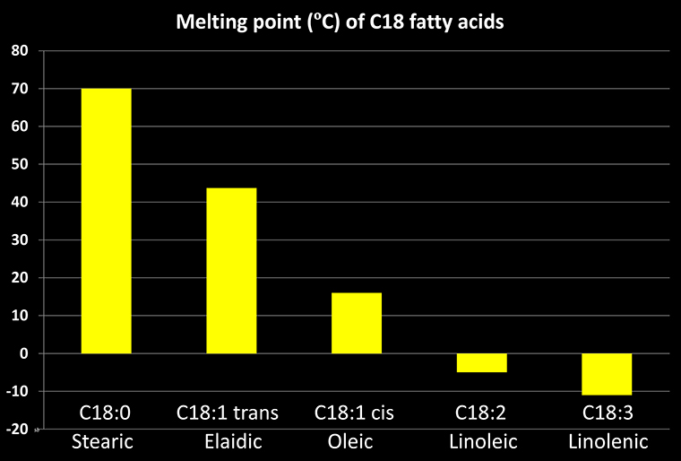 Chart of melting points for C18 fatty acids