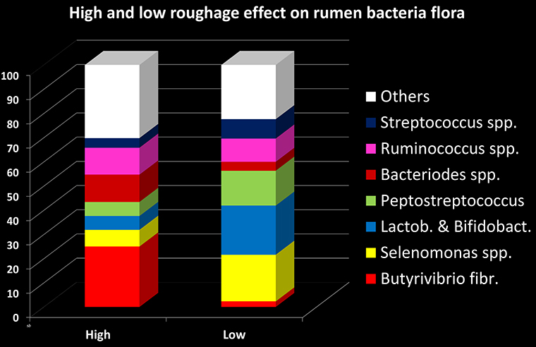 Chart of rumen microflora on grass or grain diets